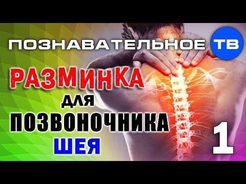 Мануальная терапия позвоночника » spine .com