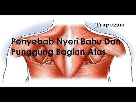 Tas tulang belakang manusia buatan desainer Indonesia tuai kontroversi - TomoNews.
