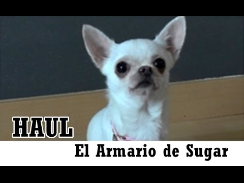 Haul El Armario De Sugar Pekewiswis Youtube