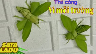 How Cicada / Insect Set / Coconut Leaf Creations