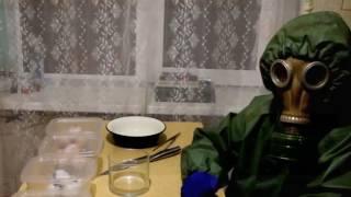 Top 5 Vídeos Sobre Homúnculos
