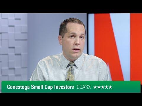 Видео Small cap funds