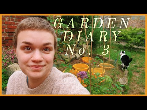 Garden Diary No. 3 | Sunken Container Bed & Recycled Plant Pots | Plant Vlog