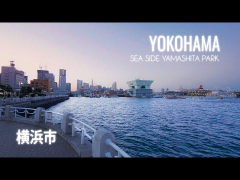 Walking in Yokohama (横浜市) Yamashita Park at blue hour | Japan 4K