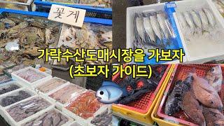 가락수산시장(도매시장) 탐방기~!! (초보자 가이드)