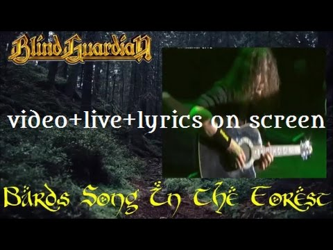 Blind Guardian-The Bard's Song (In The Forest) (video+live+lyrics on screen)