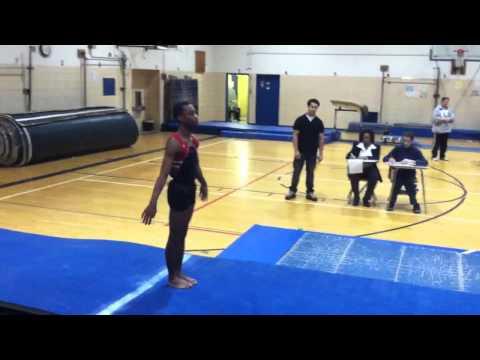 Dewitt Clinton High School Gymnastics
