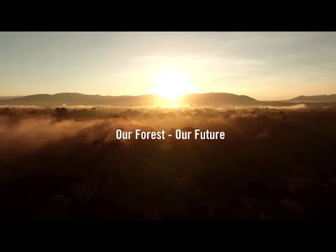 Our Forest - Our Future | Environmental Protection & Ecotourism in Cambodia