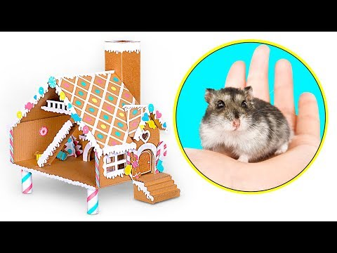 diy-hamster-gingerbread-house- -a-cardboard-craft