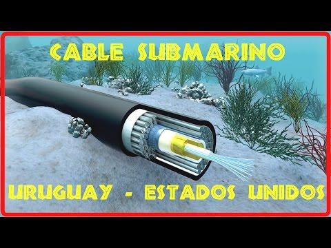 Antel anuncia cable submarino entre Estados Unidos y Uruguay. 6816