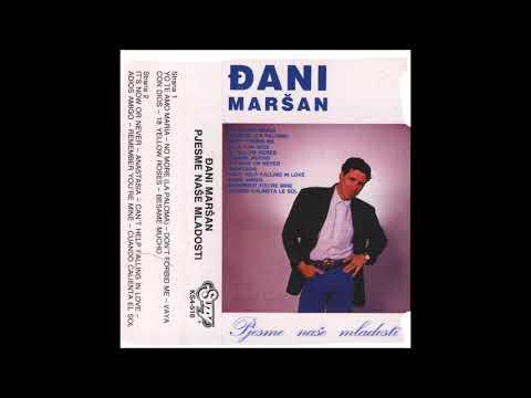 Dani Marsan Its Now or never audio