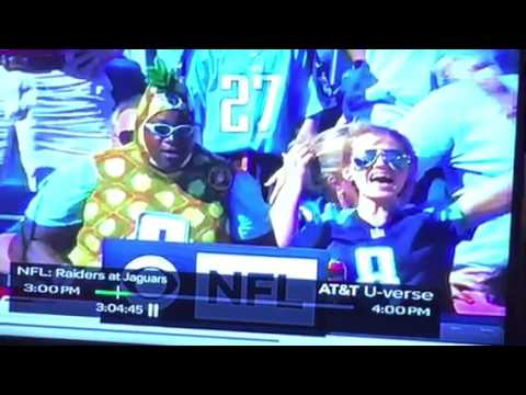 What Is This Marcus Mariota Fan Wearing? #INDvsTEN