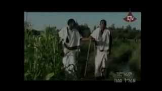 ethiopian traditional music bahlawi raya song besola