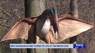 Dinosaur Safari opens April 19th at the Bronx Zoo