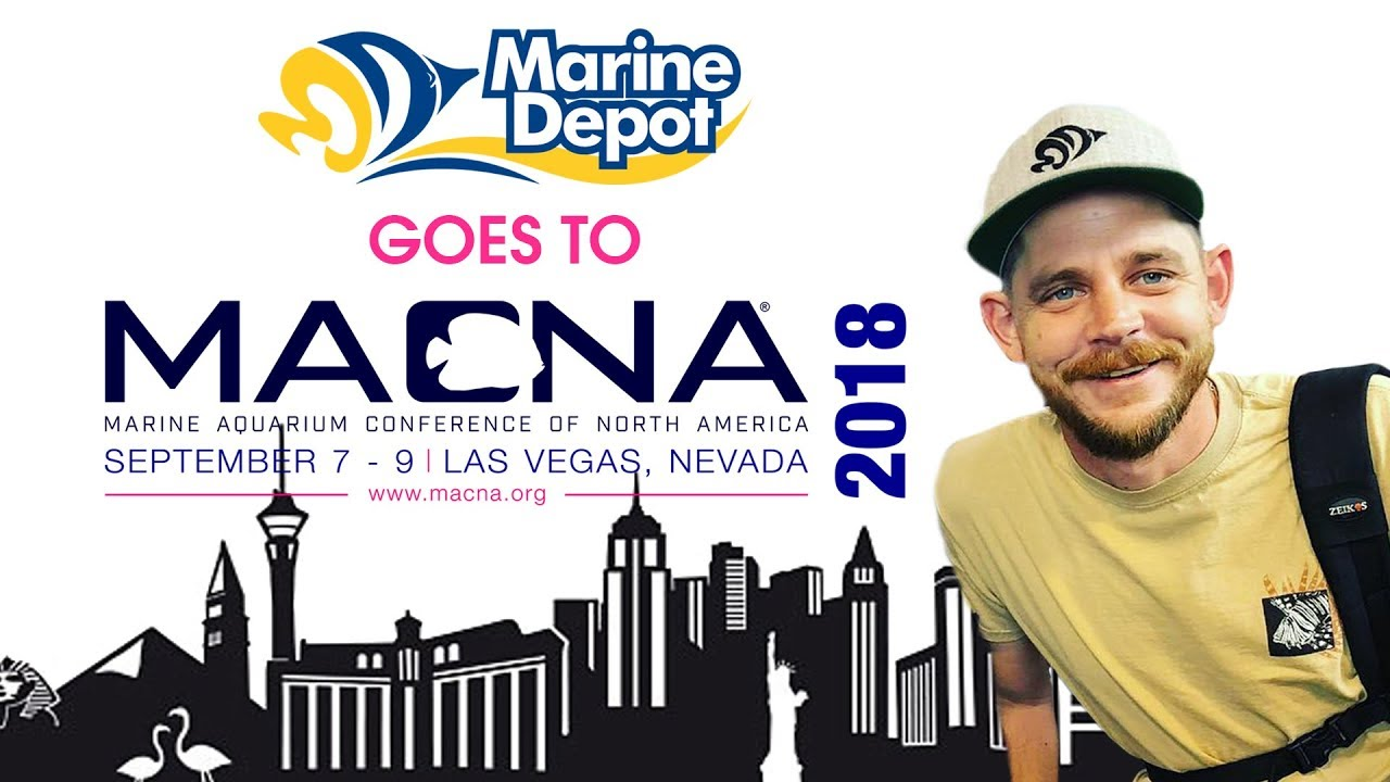 Viva Las Vegas! Highlights @ MACNA 2018 | Marine Aquarium Conference of North America Thumbnail