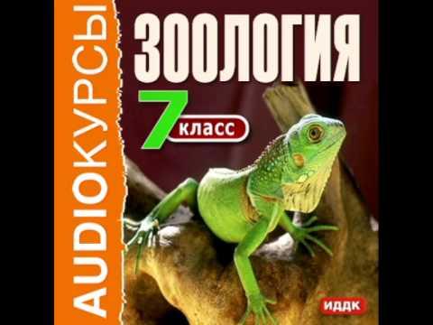 2000251 Urok 01 Аудиокнига.