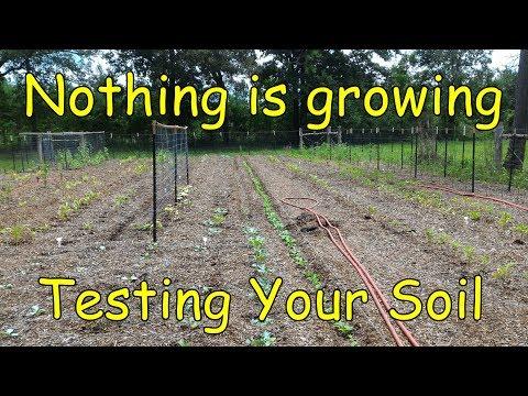 Testing Your BTE Garden Soil For NPK And PH