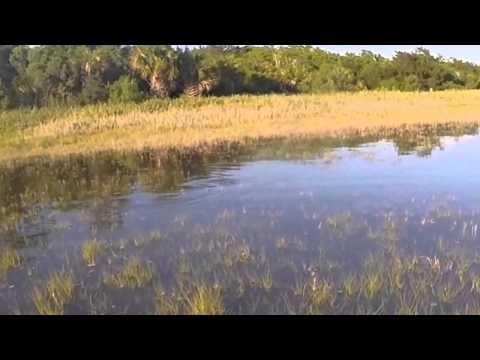 Copy of Savannah fly.com