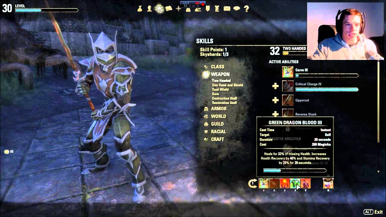 The Best Build For Eso