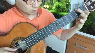 Vincent (Starry Starry Night) - Don Mclean , arr. by John Knowles, classical guitar cover