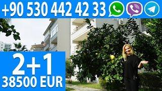Недвижимость в Турции от собственниика: Купить Апартаменты в Алании с видом на море