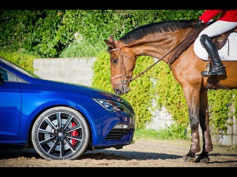 SEAT Leon CUPRA and show jumping horse measure up in fascinating test of agility