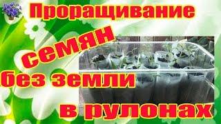 Проращивание семян без земли (в рулонах) Часть 1-я(Проращивание семян на туалетной бумаге часть 1 Например, как вырастить много рассады, при этом не занимая..., 2014-11-06T19:32:33.000Z)