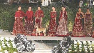 Собака прогулялась по подиуму во время показа мод в Индии