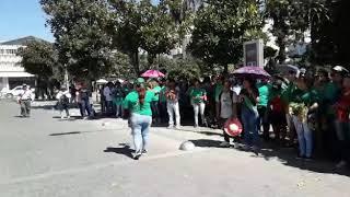 Video: La UTT frente a casa de Gobierno