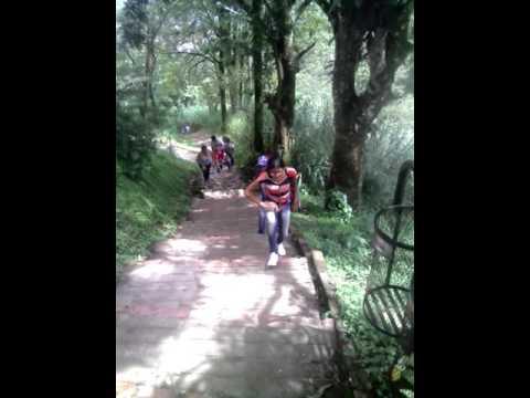Caminata por la paz Ubch Bustamante