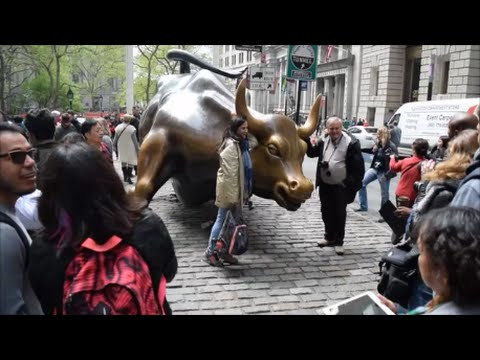 Wall Street Bull, New York City  (HD)