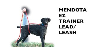 Mendota EZ Trainer Lead/Leash