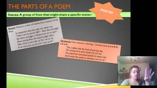 Literary Form and Meaning