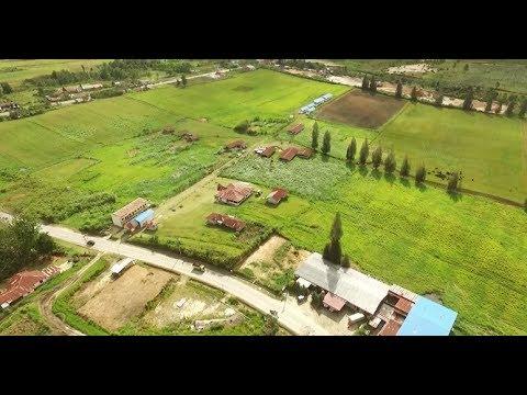 Profil Balai Pembibitan Ternak Unggul dan Hijauan Pakan Ternak (BPTU HPT) Siborongborong