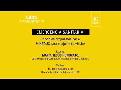 Charla: Adaptación escolar en emergencia sanitaria: Principios propuestos por el Mineduc para el ajuste curricular