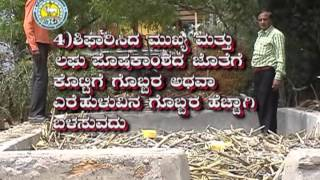 Plant protection in Pomegranate (Kannada DVD)