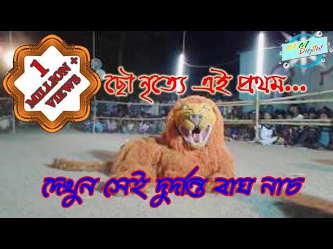 Purulia chhau dance,Tiger Dance(বাঘ...