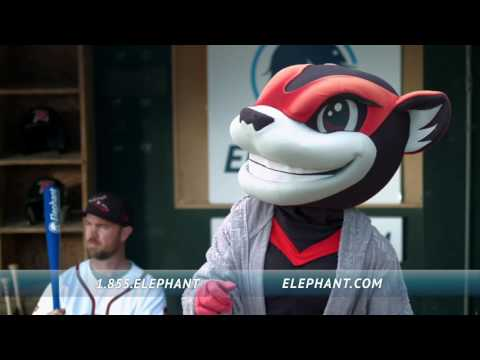 Elephant Auto Insurance   The Diamond