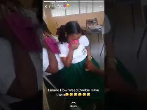 Trinidad School Girl's |High On Weed Cookie's| may 28th 2019