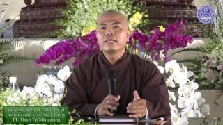 Khái niệm và nguồn gốc của Phật tánh - TT. Thích Trí Minh