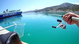 εγγλεζικο ψαρεμα ΣΑΛΠΑ 1200gr