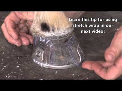 Applying & Removing Blisters: Pat's Tips & Tricks for Hanton Glue-On Horseshoes