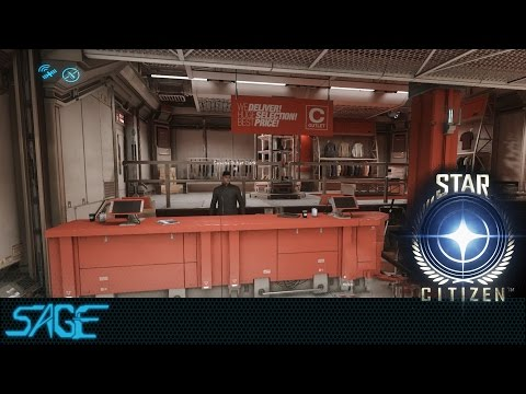 Star Citizen, The 2.4 Experience