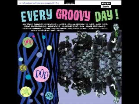 Various ‎– Every Groovy Day! 20 Forgotten Garage-Pop Cuts 1965-'69 Rock Music Album Compilation LP