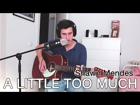 Shawn Mendes - A Little Too Much (cover)