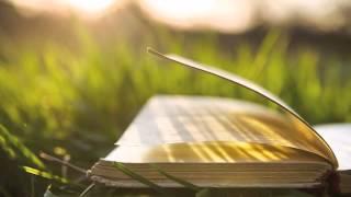 Fireflies Book Trailer - Heather Gordon-Young