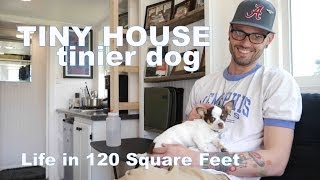 Tiny House, Tinier Dog- Living in a 120 Square Feet (Small Home