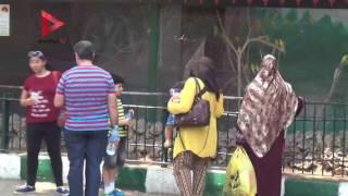 زوار حديقة الحيوان في