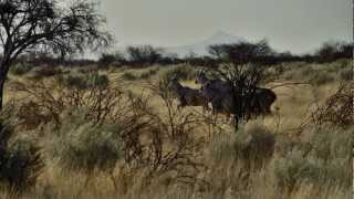 Onduruquea Guest Farm, Omaruru, Spitzkoppe, Erongo Gebirge