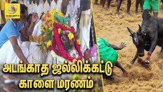 அடங்காத ஜல்லிக்கட்டு காளை மரணம் | Sivagangai Jallikattu Kaalai Death Funeral